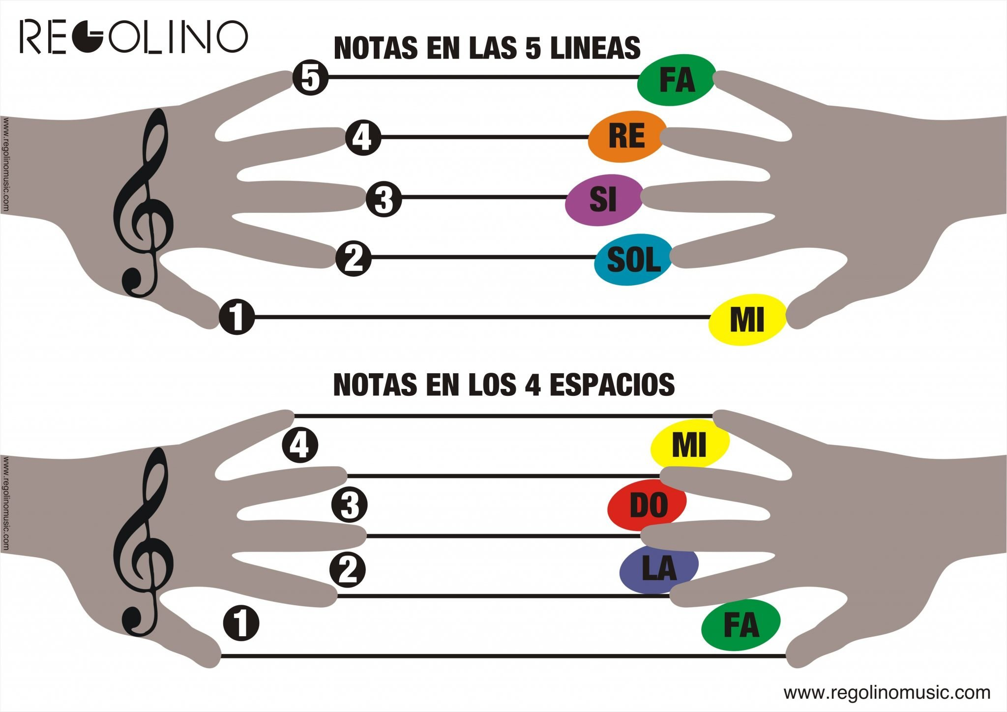 como memorizar las notas musicales en las 5 cinco lineas y 4 cuatro espacios